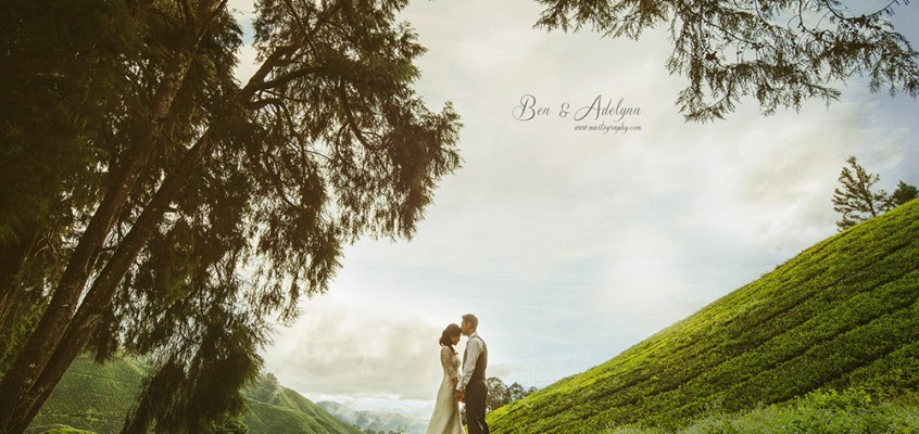 Cameron Highland Pre-Wedding photography