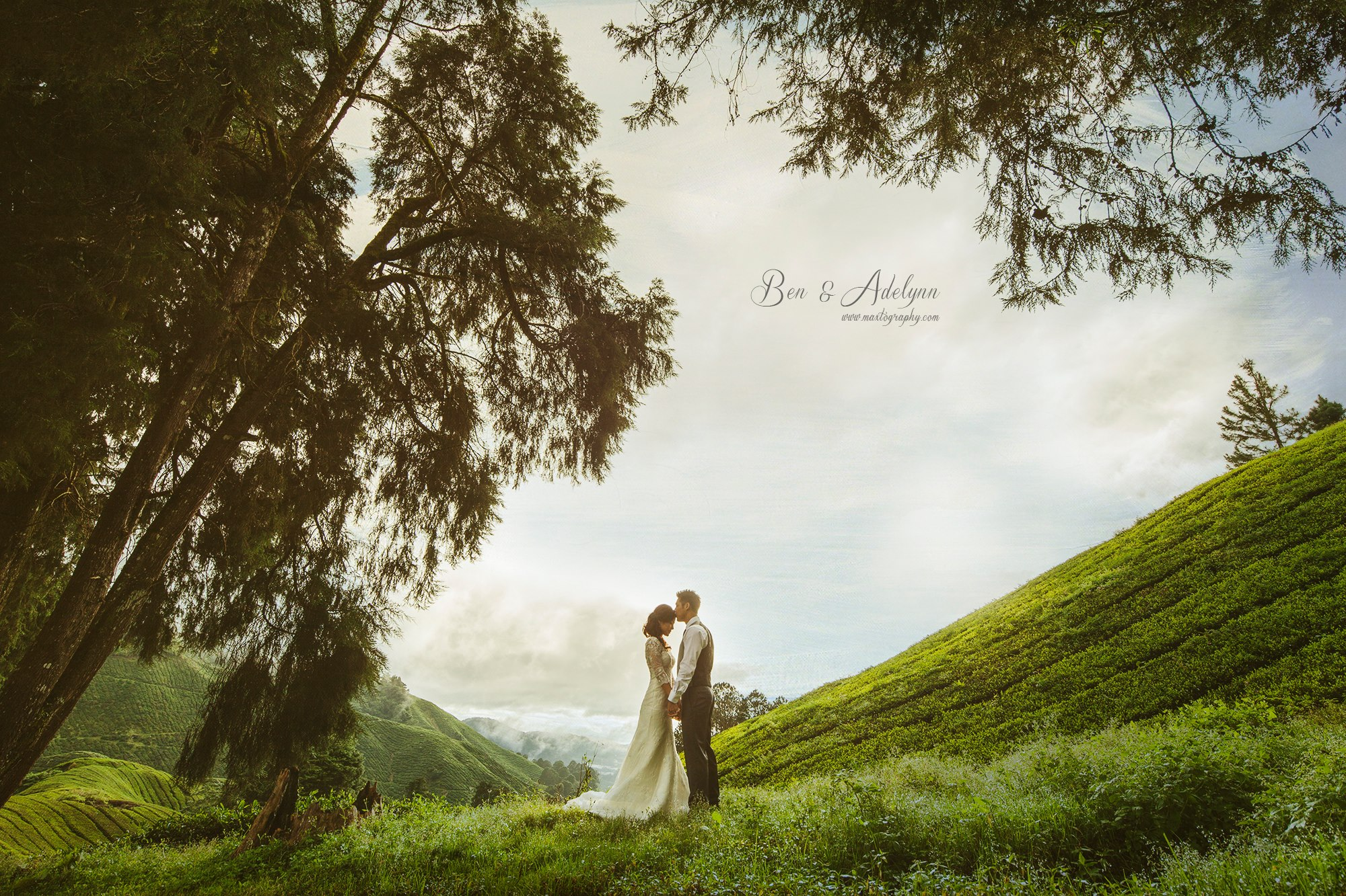 Beautiful couple at Cameron Highland
