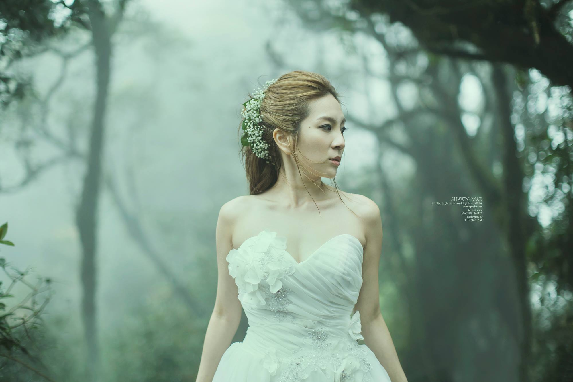 Bride in Mossy Forest at Cameron Highland