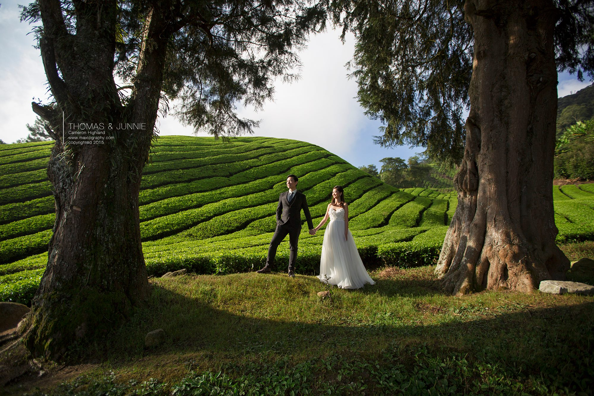Couple Boh tea plantation at Cameron Highland