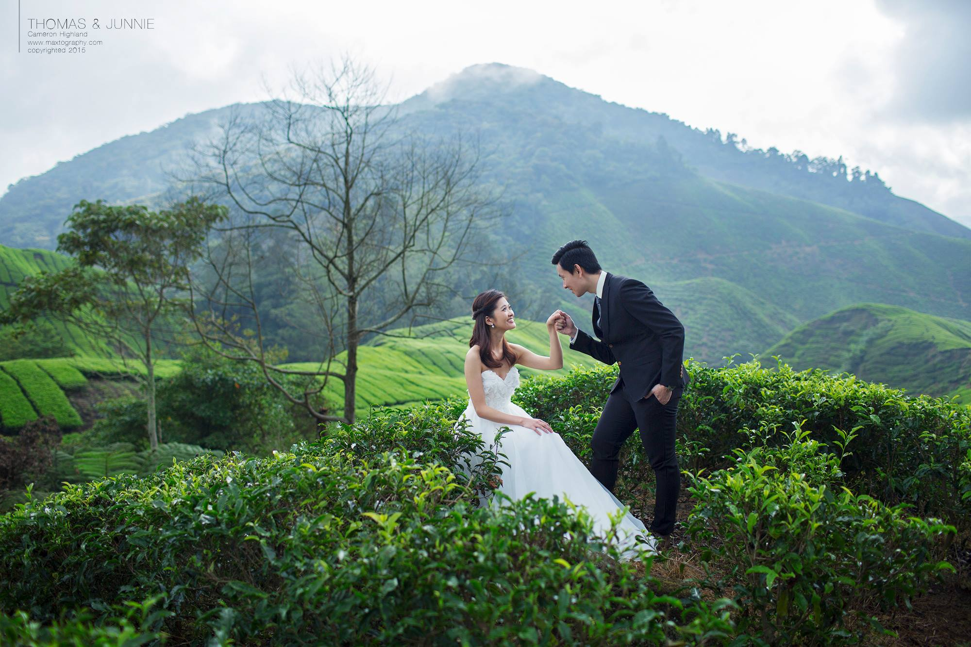 Couple hand inhand at Boh tea hill at Cameron Highland