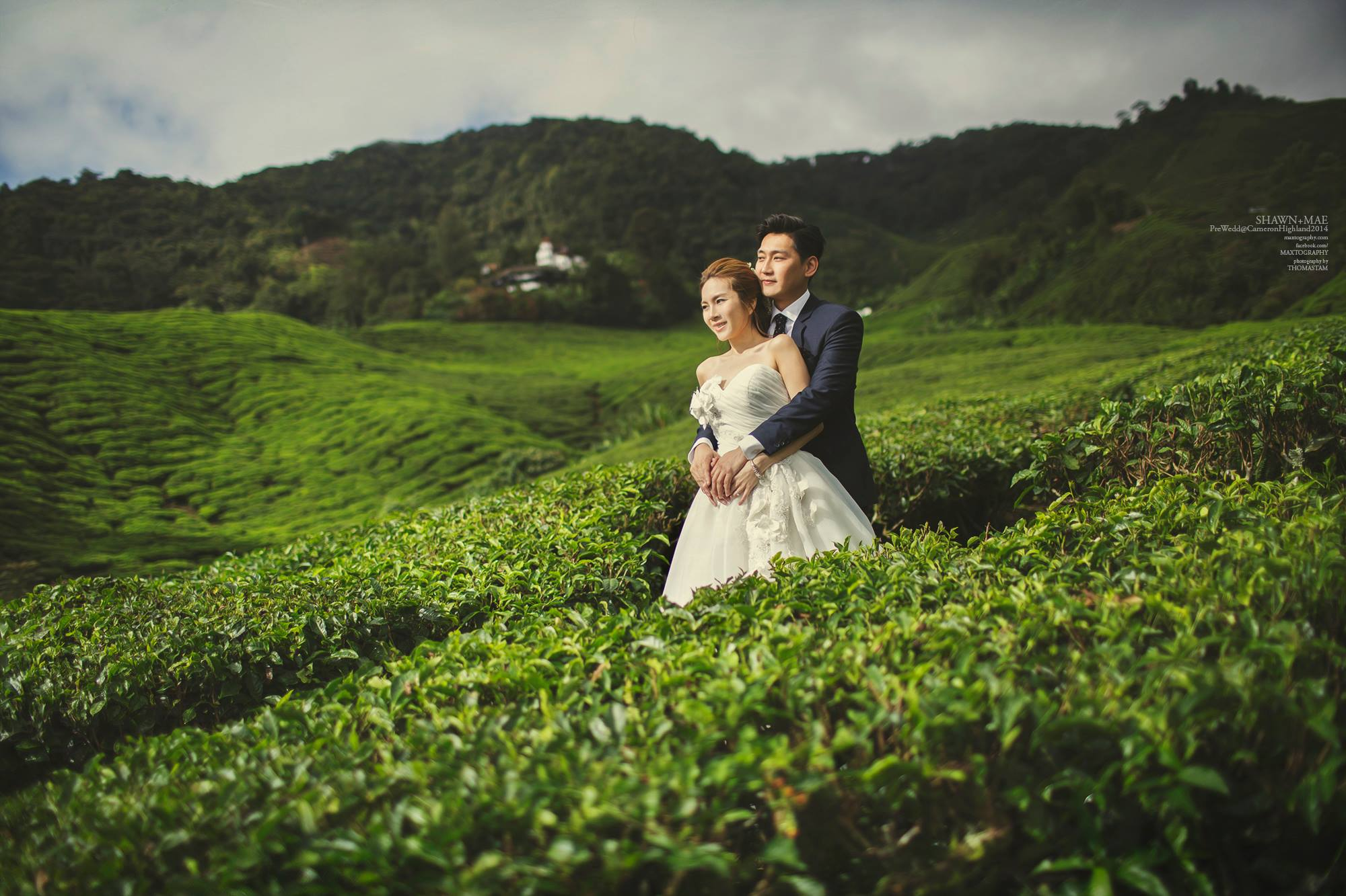 Couple hugging at boh tea Cameron Highland