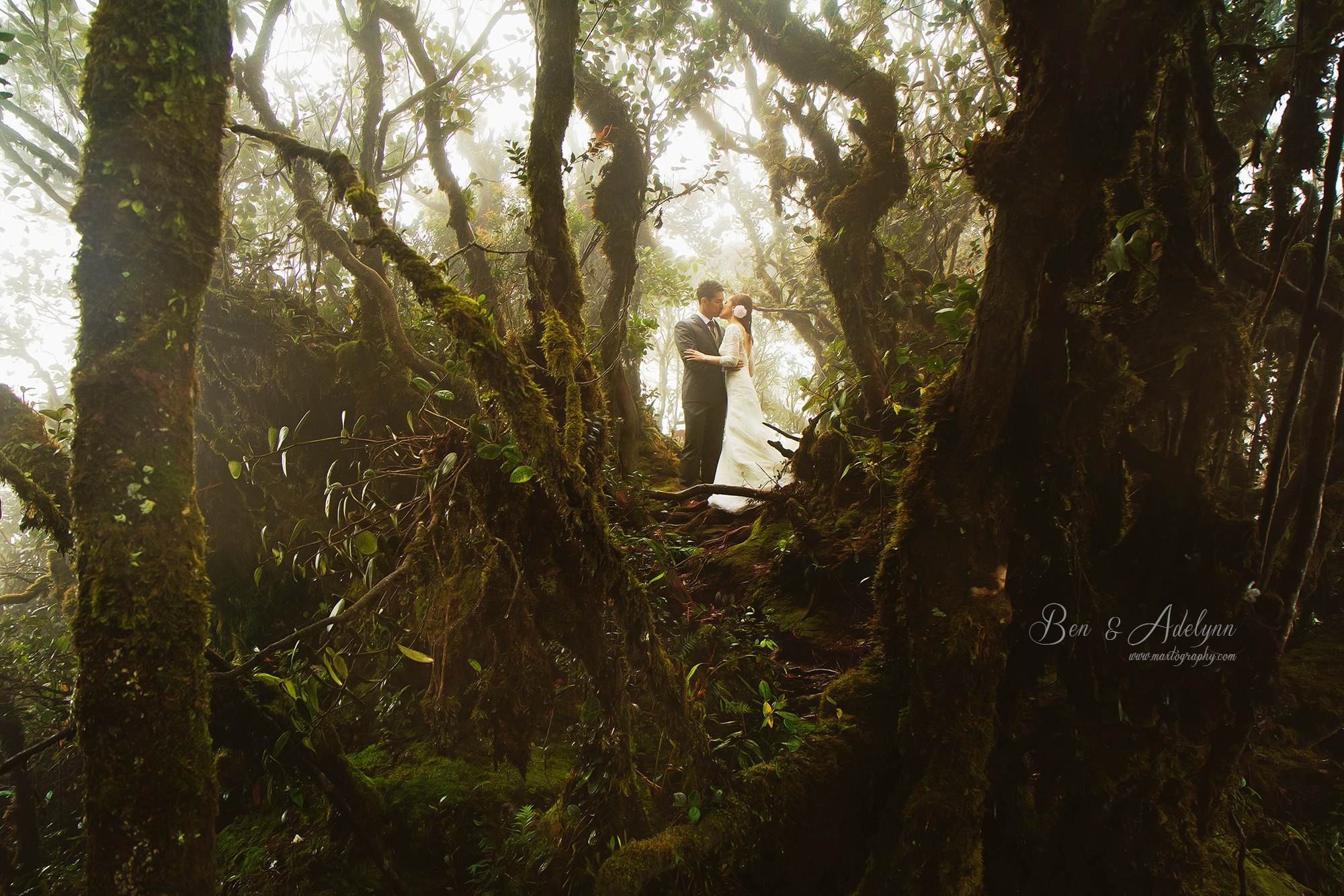 Couple kissing in the mossy forest at Cameron Highland