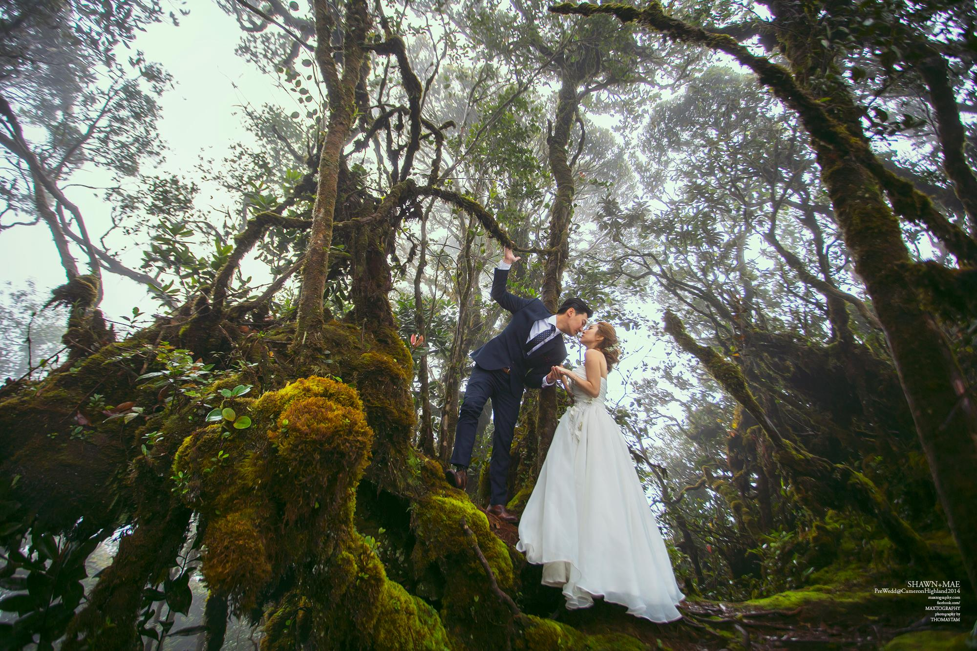 Couple pose at Mossy forest Cameron Highland