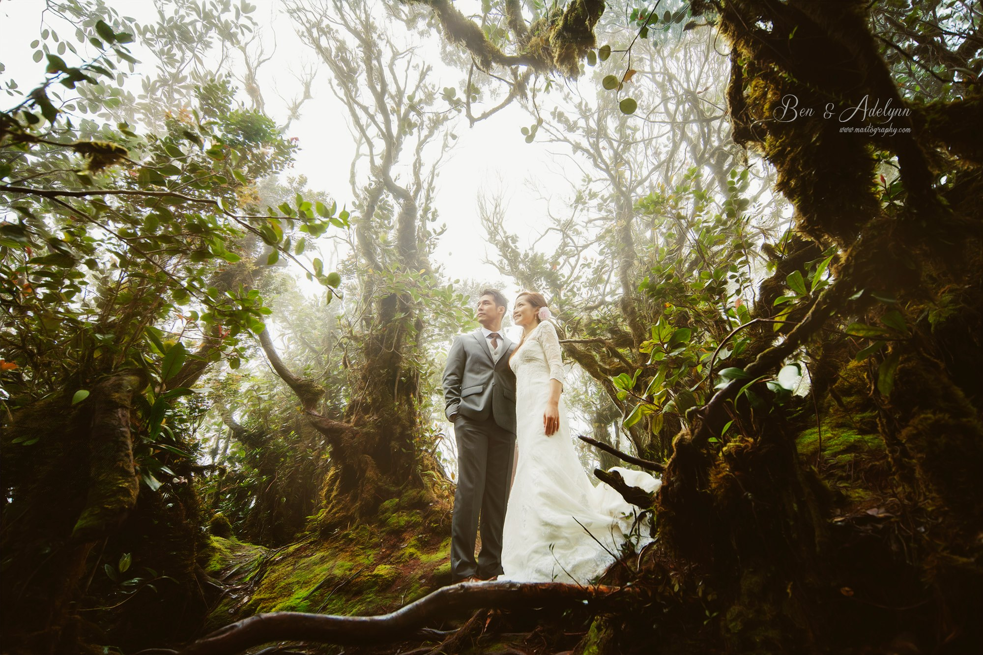 couple at mossy forest at Cameron Highland