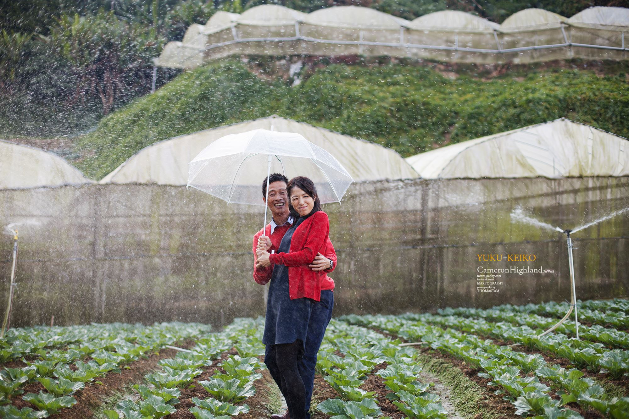 sweet couple at the farm terrace Cameron Highland