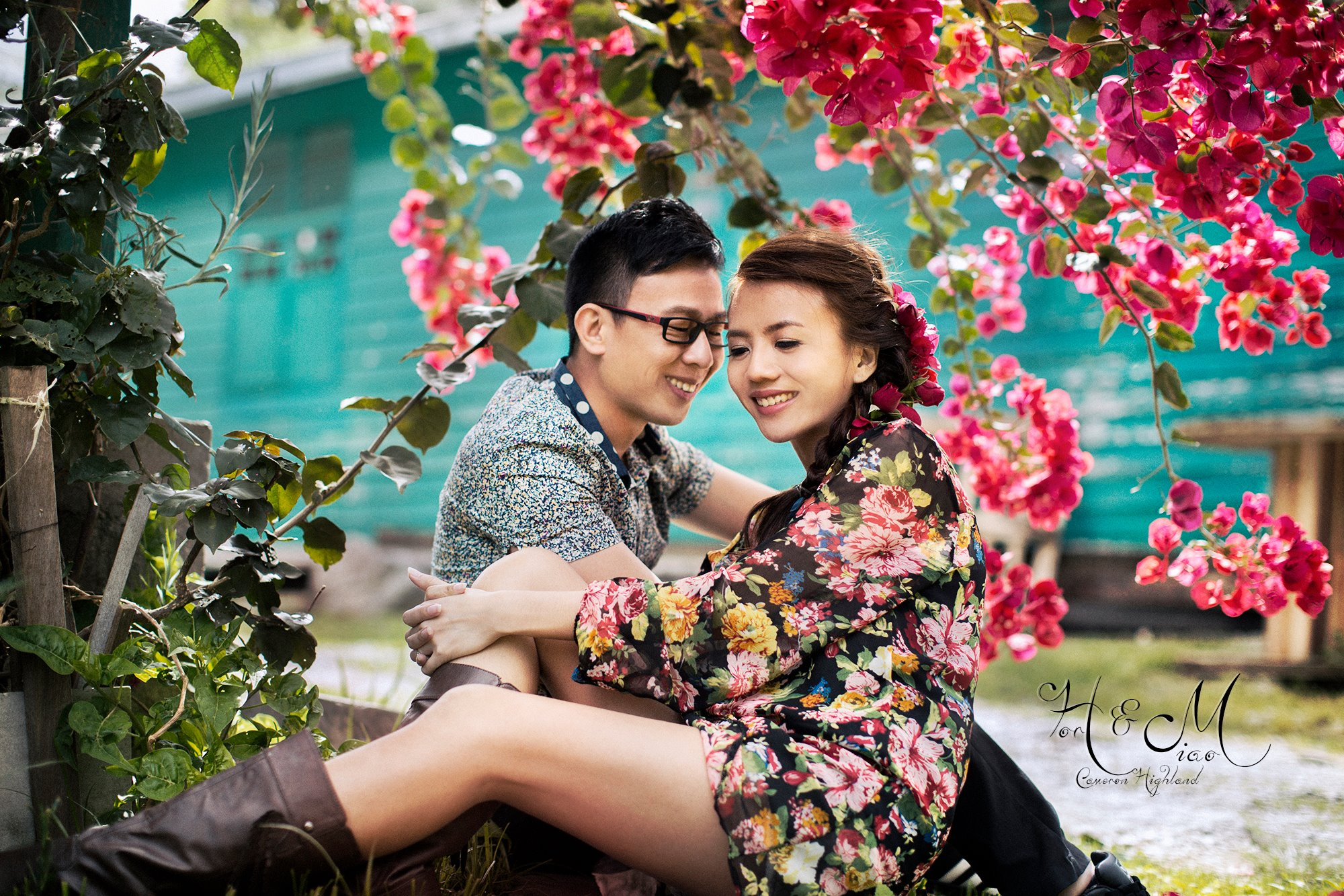 sweet couple sitting under the blossom flowers at Cameron Highland