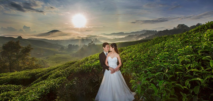 Thomas Tay & Junnie Cheng Pre-wedding shoot at Cameron Highland
