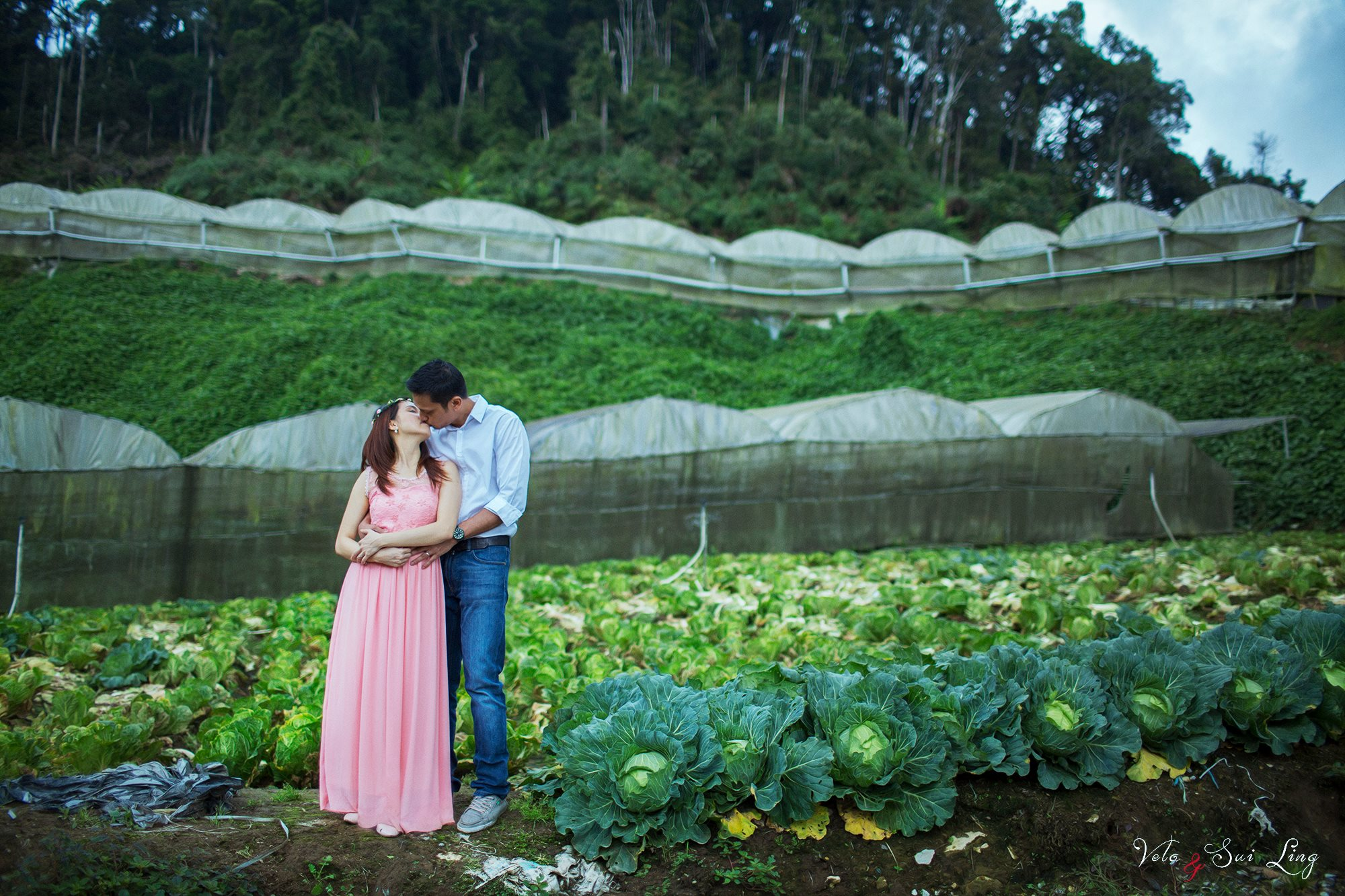 couple kissing in the verggie farm at Cameron Highland