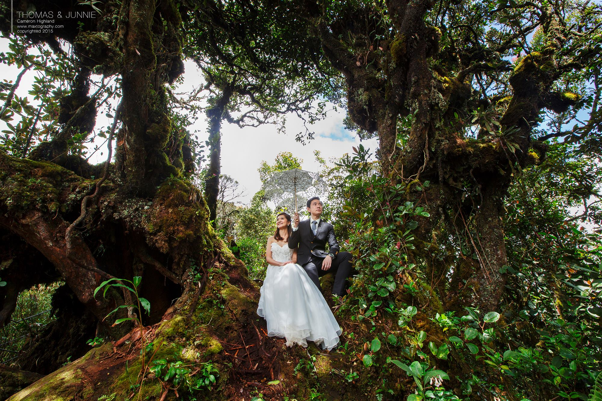 Couple poses at Mossy Forest Cameron Highland