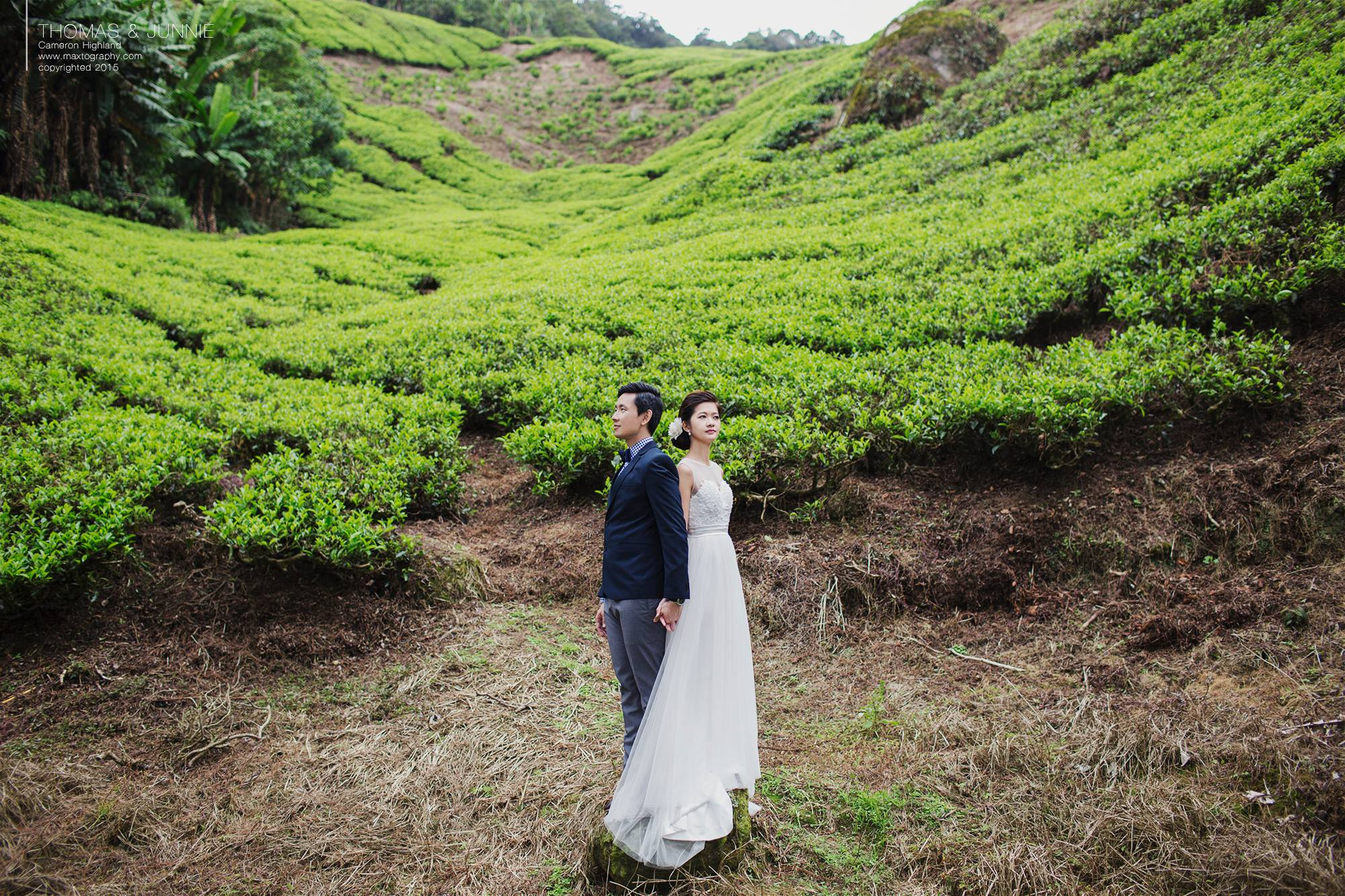 Couple standing pose at Cameron Highland